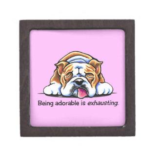 English Bulldog Being Adorable Off-Leash Art™ Premium Keepsake Box