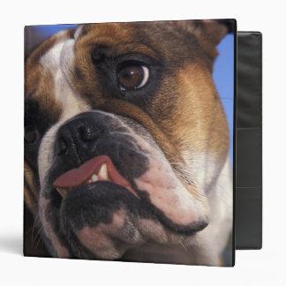 English Bulldog Binders