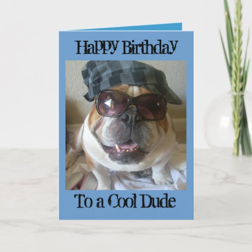 English Bulldog Birthday Card Cool Dude Card