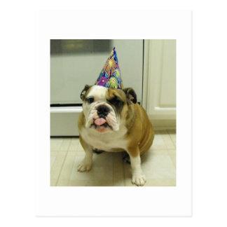 English Bulldog Birthday Postcards