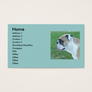 English Bulldog Business Cards! Business Card