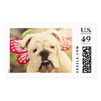English Bulldog Butterfly Photo Postage Stamp