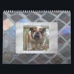 """English Bulldog Calendar<br><div class=""""desc"""">Brighten each month and each day with this awesome English bulldog calendar!</div>"""