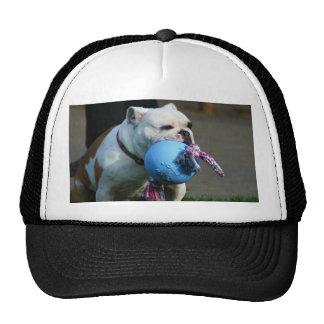 English Bulldog cap Trucker Hat