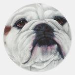 English Bulldog Close and Personal Classic Round Sticker