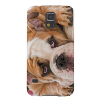 English Bulldog Galaxy S5 Cover
