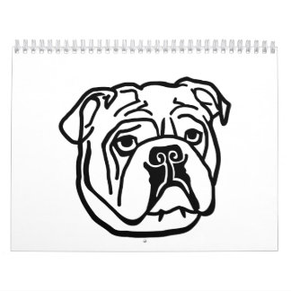 English Bulldog head face Wall Calendars