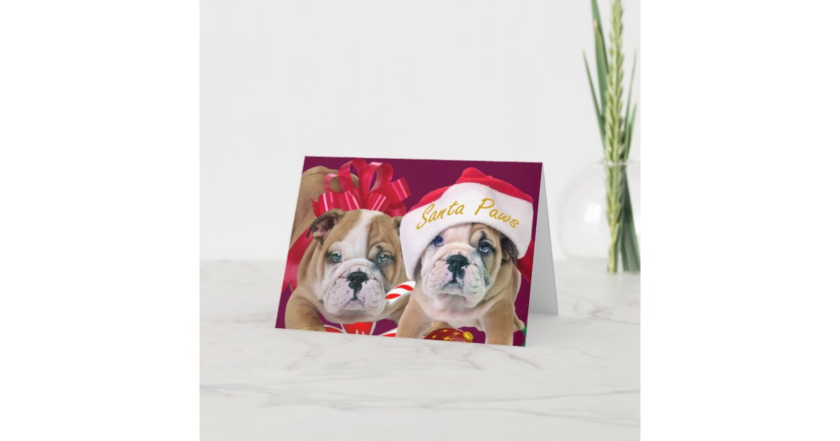 English Bulldog In Christmas Attire Cards | Zazzle.com