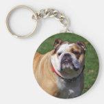 English bulldog keychain, gift idea basic round button keychain