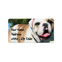 English bulldog label
