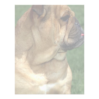 English Bulldog Letterhead