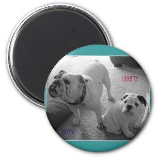 English Bulldog Magnet Titan and Liberty