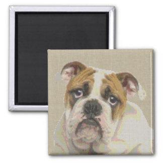 English Bulldog Needlepoint Portrait Magnet