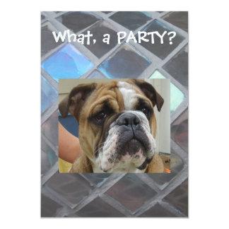 English Bulldog Party Invitations, birthday or any Card