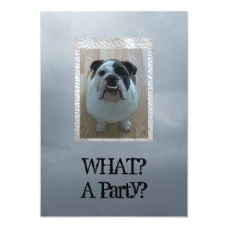 English bulldog party invitations! card