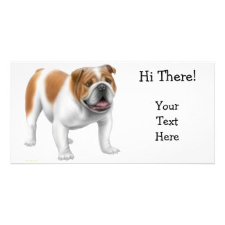 English Bulldog Photo Card