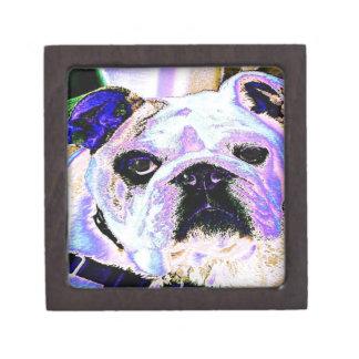 English Bulldog Pop Art Gift Box