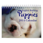 English Bulldog Puppies 2014 Calendar