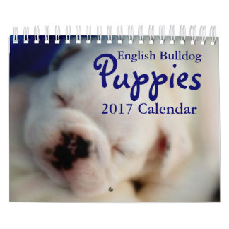 English Bulldog Puppies 2017 Calendar