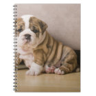 English bulldog puppies notebook