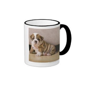 English bulldog puppies ringer coffee mug