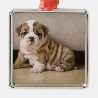 English bulldog puppies square metal christmas ornament