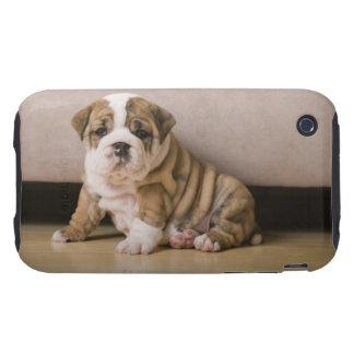 English bulldog puppies tough iPhone 3 cases