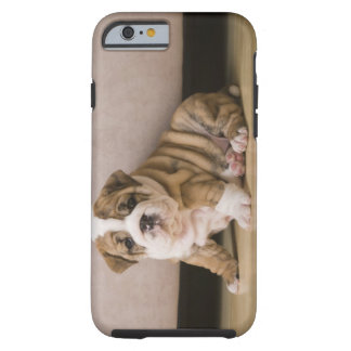 English bulldog puppies tough iPhone 6 case