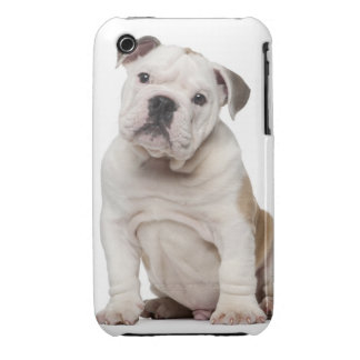 English bulldog puppy (2 months old) Case-Mate iPhone 3 case