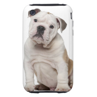 English bulldog puppy (2 months old) tough iPhone 3 cover