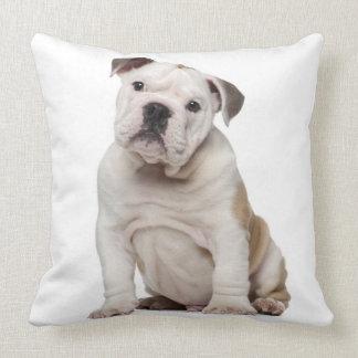 English bulldog puppy (2 months old) throw pillow