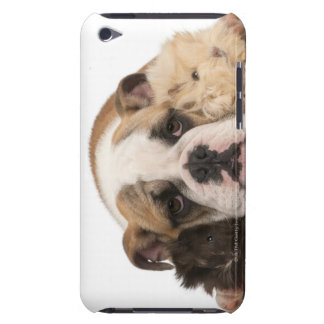 english bulldog puppy (4 months old) and two barely there iPod case