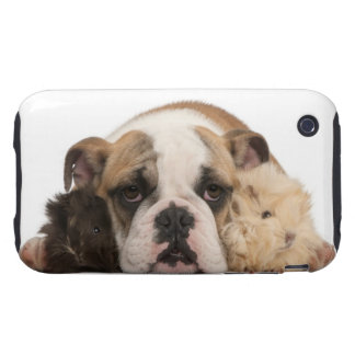 English bulldog puppy (4 months old) and two tough iPhone 3 cover