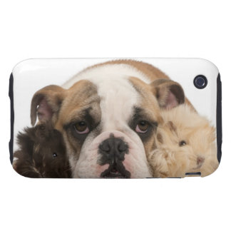 english bulldog puppy (4 months old) and two tough iPhone 3 covers
