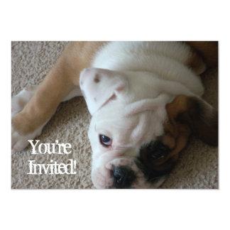 English Bulldog Puppy Invitations Birthday any occ