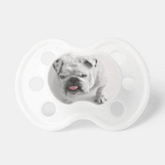 English Bulldog Puppy Pacifier
