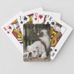 "English Bulldog Puppy Playing Cards<br><div class=""desc"">English bulldog puppy</div>"