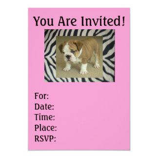 English Bulldog Puppy Zebra & Pink Invitations