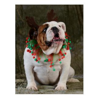 English Bulldog Reindeer Postcard