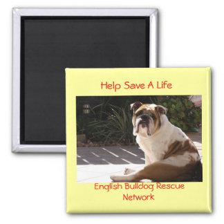 English Bulldog Rescue Network - Customized 2 Inch Square Magnet