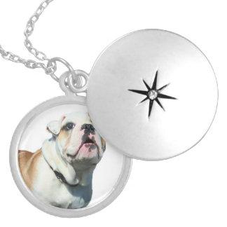 English bulldog round locket