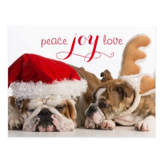 English Bulldog Santa And Reindeer Postcard