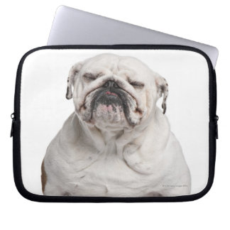English Bulldog, sitting in front of white Laptop Sleeve