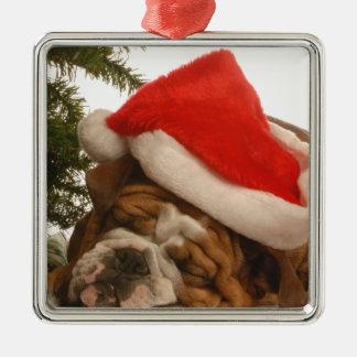 English Bulldog Snoozing Silver Ornament
