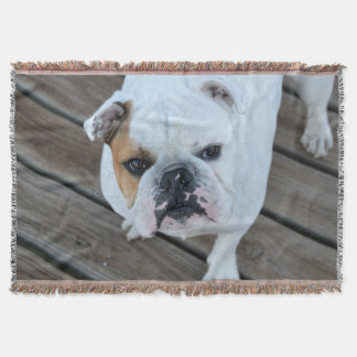 english bulldog blanket english bulldog throw blankets zazzle 7888