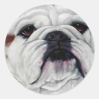 English Bulldog Up Close Round Stickers