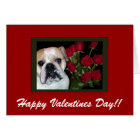 English Bulldog Valentine's Day Card