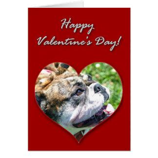 English bulldog Valentines Day Card