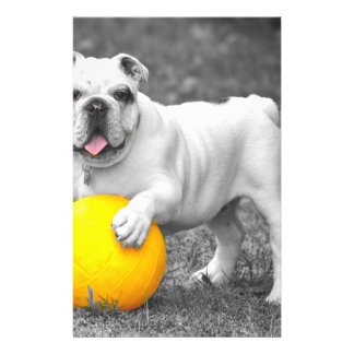 "English bulldog white and the yellow ball 5.5"" x 8.5"" flyer"