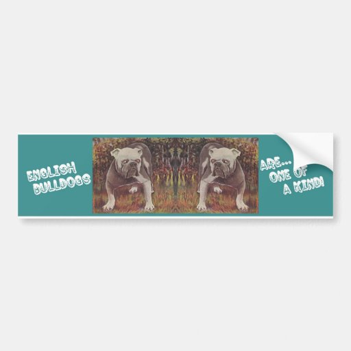 ENGLISH BULLDOGS ~ ARE ONE OF A KIND!! CAR BUMPER STICKER